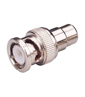 BNC male to RCA female connector.